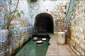 Siloa Pool